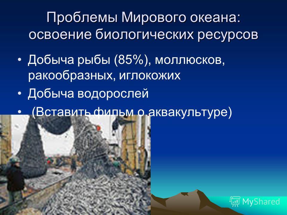 Проблемы Мирового океана: освоение биологических ресурсов Добыча рыбы (85%), моллюсков, ракообразных, иглокожих Добыча водорослей (Вставить фильм о аквакультуре)
