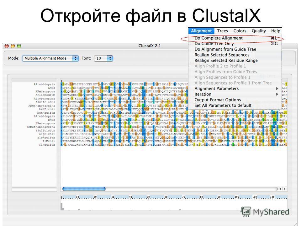 Откройте файл в ClustalX