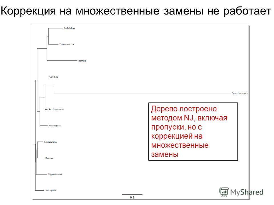Коррекция на множественные замены не работает Дерево построено методом NJ, включая пропуски, но с коррекцией на множественные замены