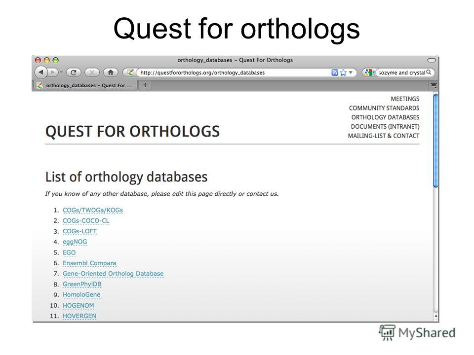 Quest for orthologs