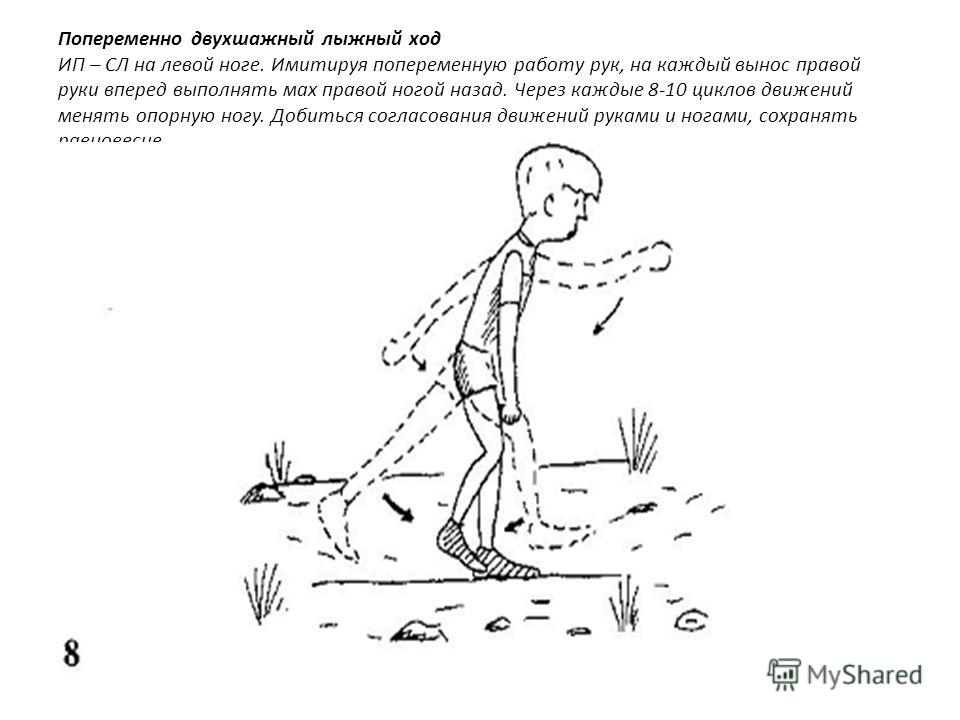 Попеременно двухшажный лыжный ход ИП – СЛ на левой ноге. Имитируя попеременную работу рук, на каждый вынос правой руки вперед выполнять мах правой ногой назад. Через каждые 8-10 циклов движений менять опорную ногу. Добиться согласования движений рука