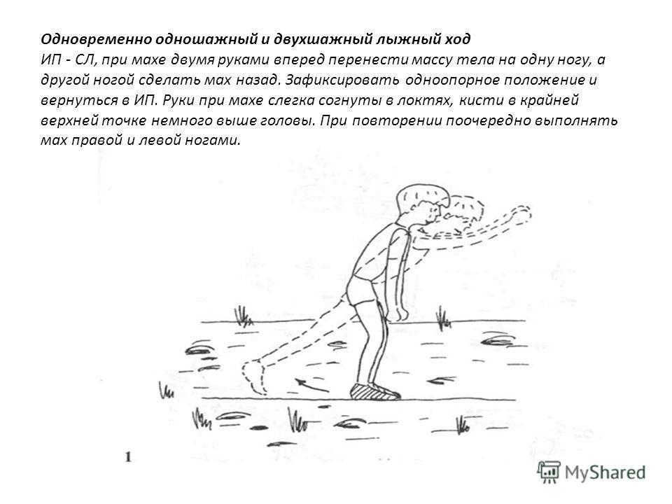 Одновременно одношажный и двухшажный лыжный ход ИП - СЛ, при махе двумя руками вперед перенести массу тела на одну ногу, а другой ногой сделать мах назад. Зафиксировать одноопорное положение и вернуться в ИП. Руки при махе слегка согнуты в локтях, к