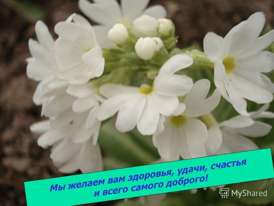 Мы желаем вам здоровья, удачи, счастья и всего самого доброго!