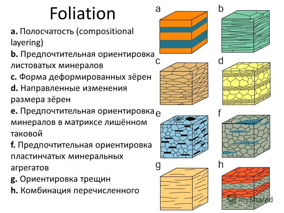 a. Полосчатость (compositional layering) b. Предпочтительная ориентировка листоватых минералов c. Форма деформированных зёрен d. Направленные изменения размера зёрен e. Предпочтительная ориентировка минералов в матриксе лишённом таковой f. Предпочтит