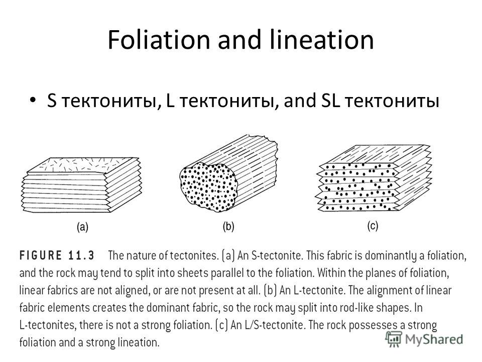 Foliation and lineation S тектониты, L тектониты, and SL тектониты