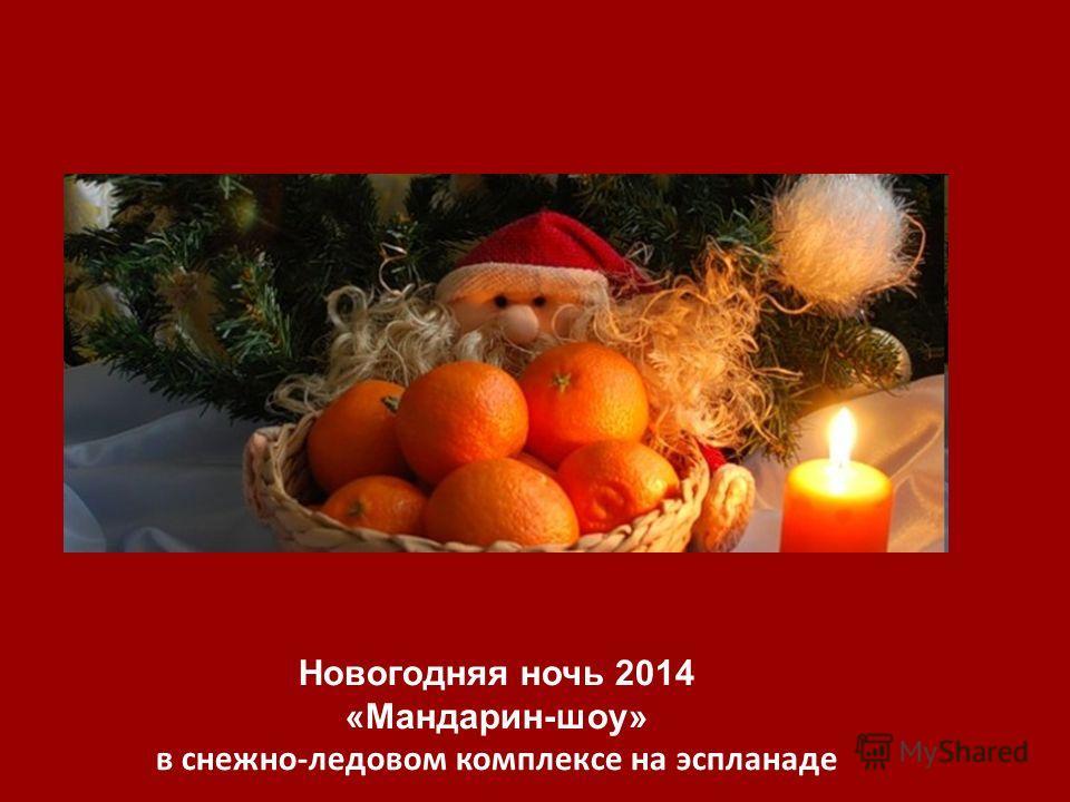 Новогодняя ночь 2014 «Мандарин-шоу» в снежно-ледовом комплексе на эспланаде
