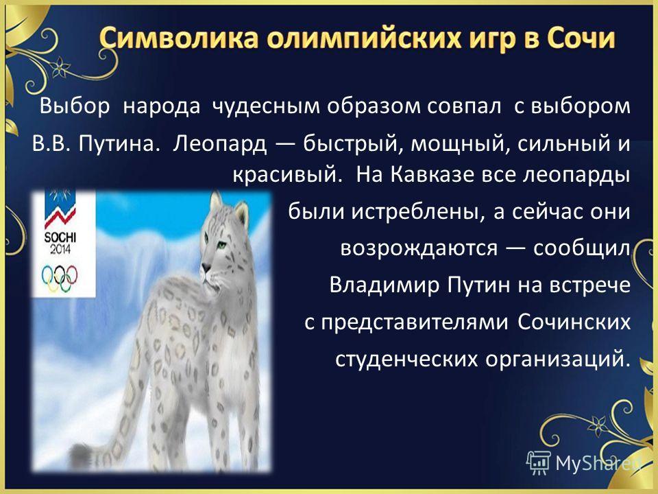 Выбор народа чудесным образом совпал с выбором В.В. Путина. Леопард быстрый, мощный, сильный и красивый. На Кавказе все леопарды были истреблены, а сейчас они возрождаются сообщил Владимир Путин на встрече с представителями Сочинских студенческих орг