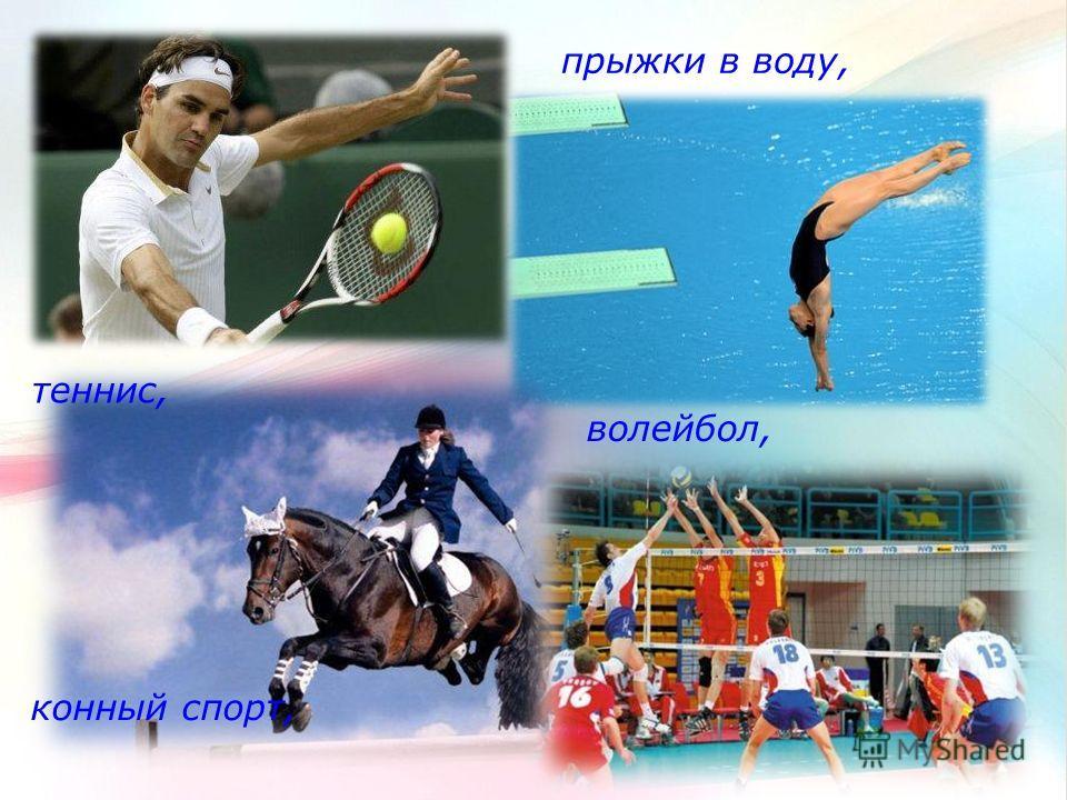 прыжки в воду, конный спорт, теннис, волейбол,