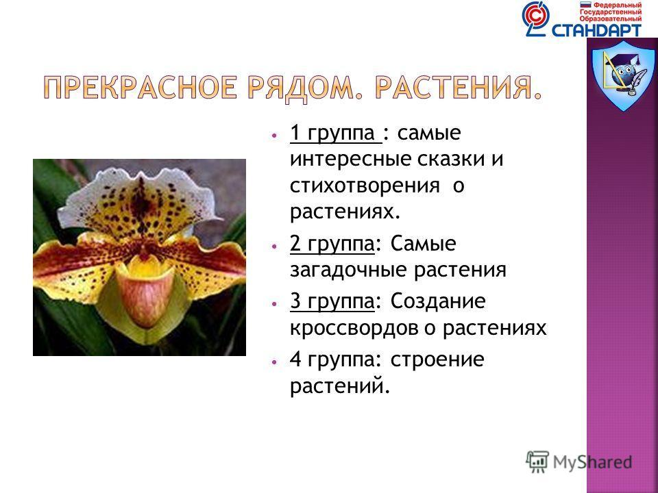 1 группа : самые интересные сказки и стихотворения о растениях. 2 группа: Самые загадочные растения 3 группа: Создание кроссвордов о растениях 4 группа: строение растений.