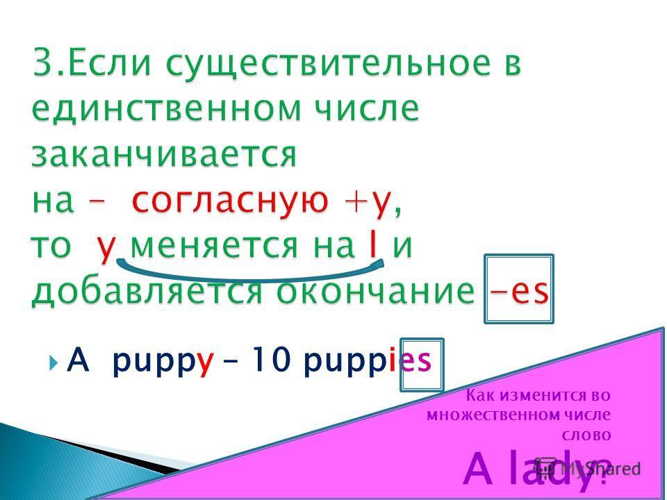 A puppy – 10 puppies Как изменится во множественном числе слово A lady ?