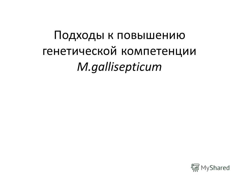 Подходы к повышению генетической компетенции M.gallisepticum