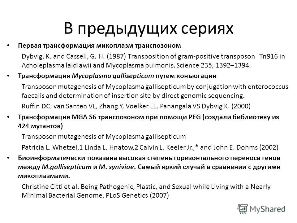 В предыдущих сериях Первая трансформация микоплазм транспозоном Dybvig, K. and Cassell, G. H. (1987) Transposition of gram-positive transposon Tn916 in Acholeplasma laidlawii and Mycoplasma pulmonis. Science 235, 1392–1394. Трансформация Mycoplasma g