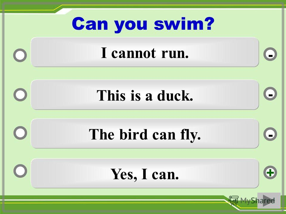 Yes, I can. This is a duck. The bird can fly. I cannot run. - - + - Can you swim?