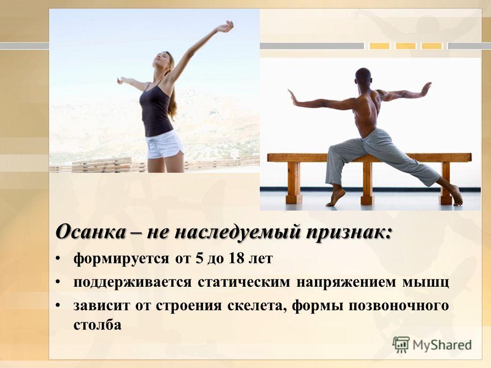 Осанка – не наследуемый признак: формируется от 5 до 18 лет поддерживается статическим напряжением мышц зависит от строения скелета, формы позвоночного столба