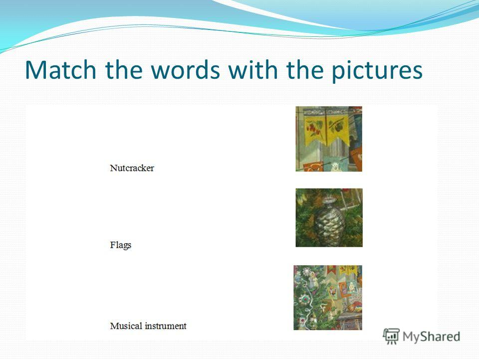 Match the words with the pictures