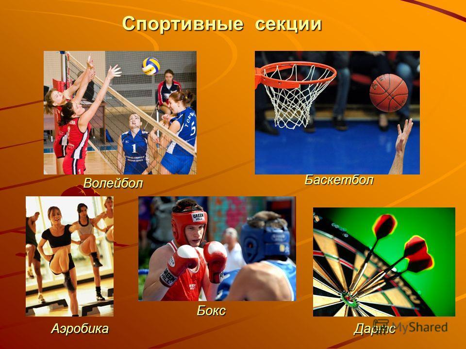 Спортивные секции Волейбол Баскетбол Аэробика Бокс Дартс