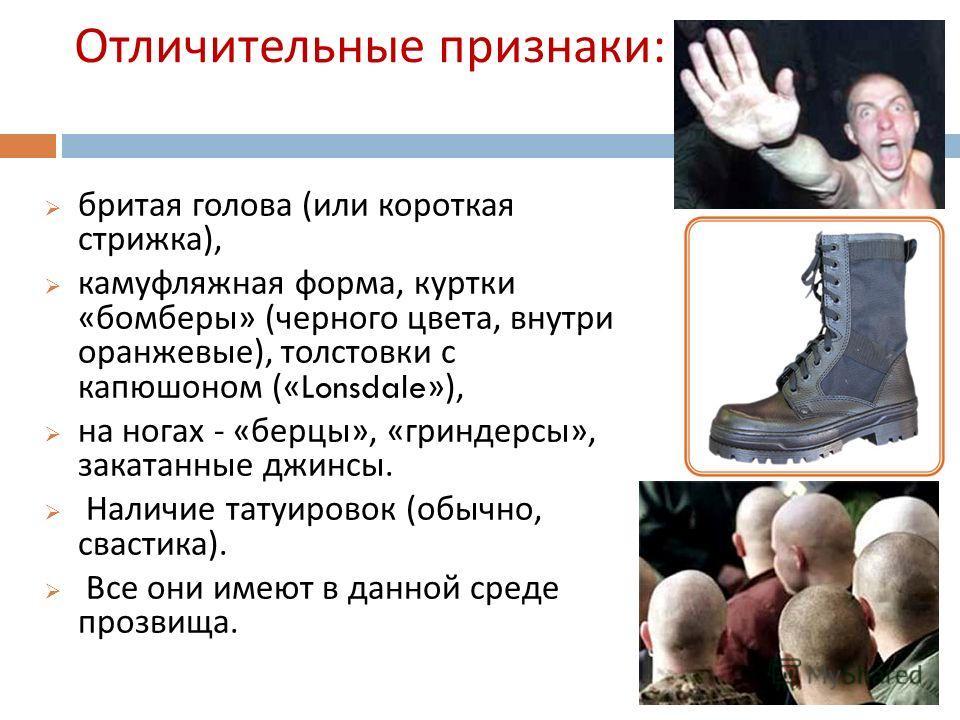 Основная идея движения : борьба за « чистоту » русской нации