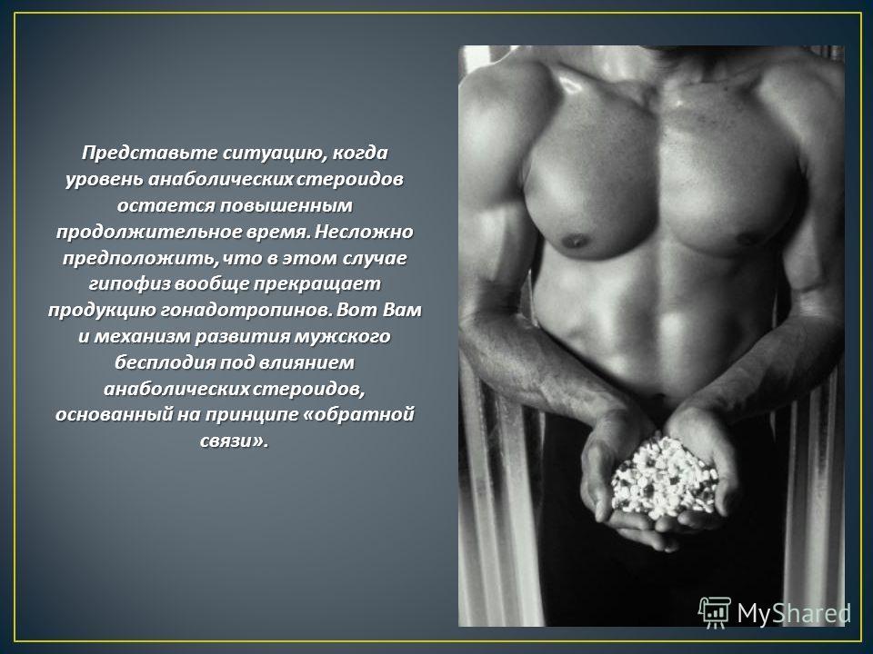 Представьте ситуацию, когда уровень анаболических стероидов остается повышенным продолжительное время. Несложно предположить, что в этом случае гипофиз вообще прекращает продукцию гонадотропинов. Вот Вам и механизм развития мужского бесплодия под вли