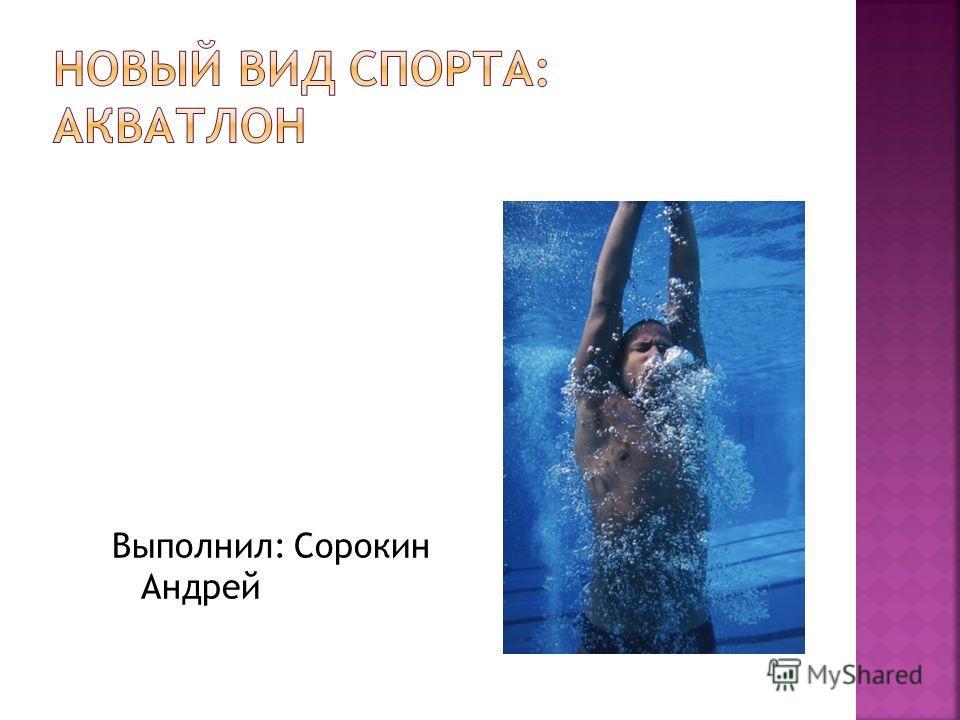 Выполнил: Сорокин Андрей