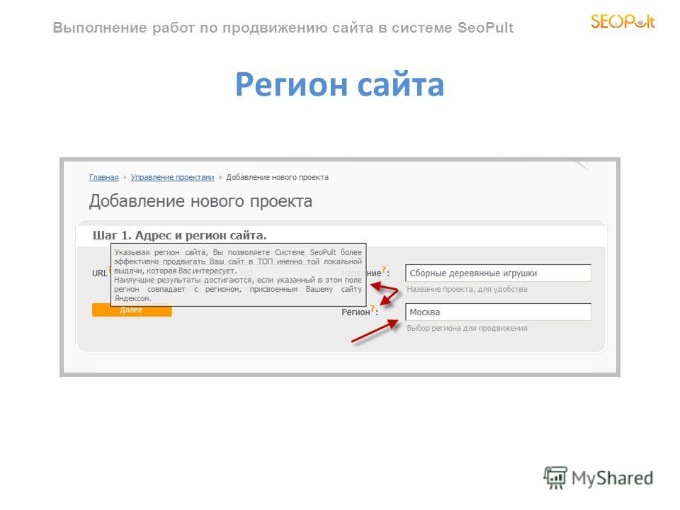 Выполнение работ по продвижению сайта в системе SeoPult Регион сайта