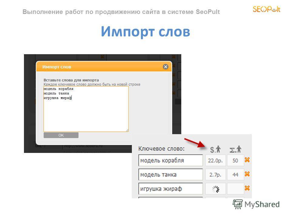 Выполнение работ по продвижению сайта в системе SeoPult Импорт слов