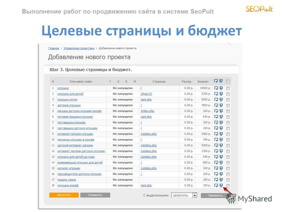 Выполнение работ по продвижению сайта в системе SeoPult Целевые страницы и бюджет