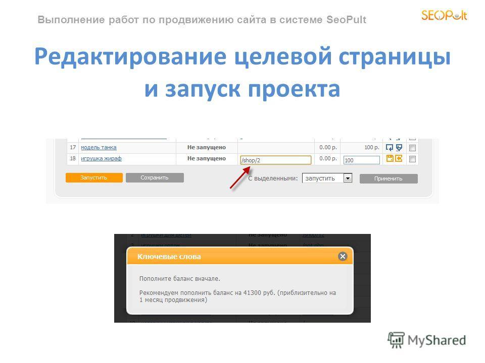Выполнение работ по продвижению сайта в системе SeoPult Редактирование целевой страницы и запуск проекта