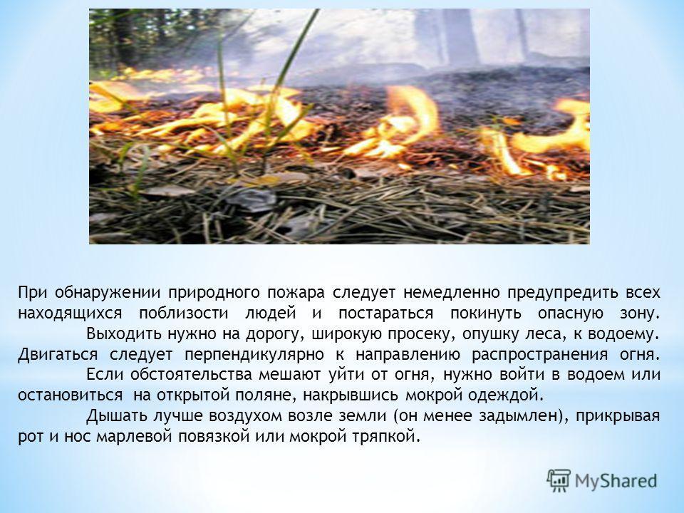 При обнаружении природного пожара следует немедленно предупредить всех находящихся поблизости людей и постараться покинуть опасную зону. Выходить нужно на дорогу, широкую просеку, опушку леса, к водоему. Двигаться следует перпендикулярно к направлени