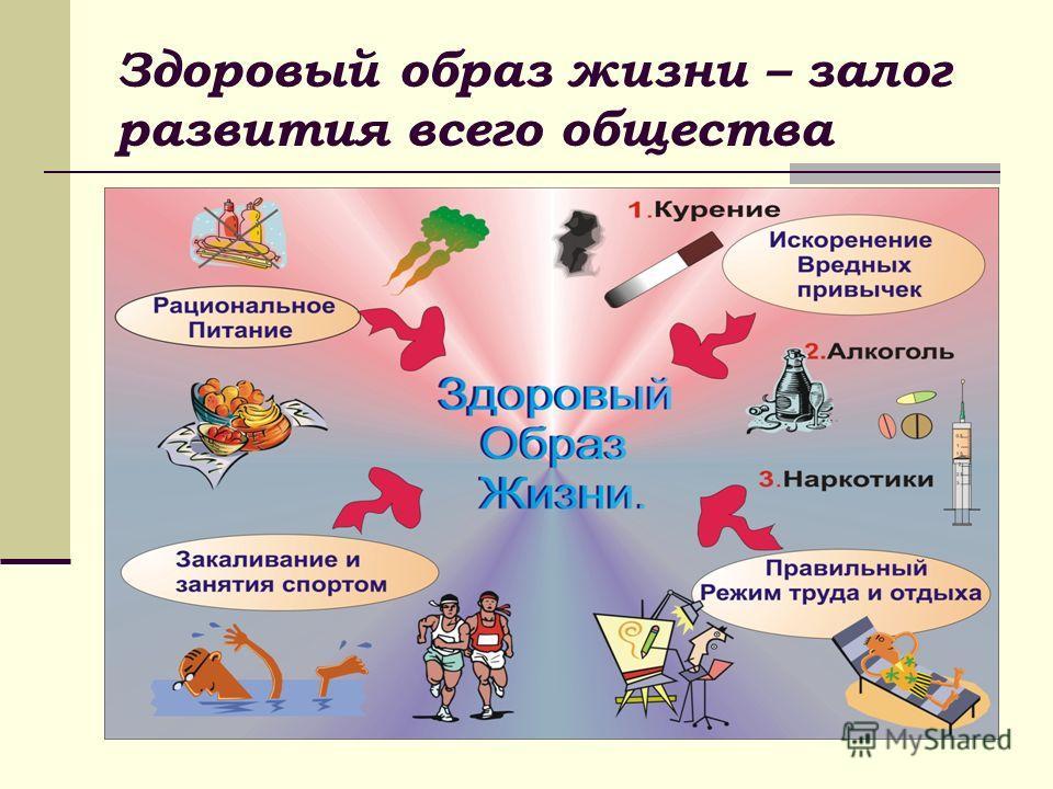 Здоровый образ жизни – залог развития всего общества