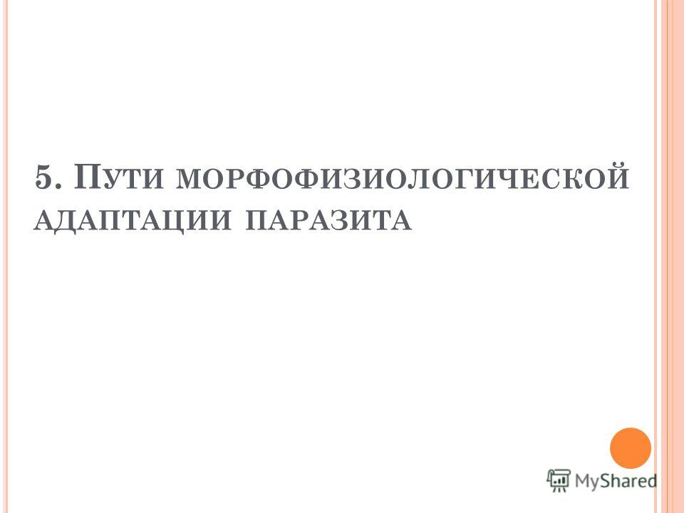 5. П УТИ МОРФОФИЗИОЛОГИЧЕСКОЙ АДАПТАЦИИ ПАРАЗИТА