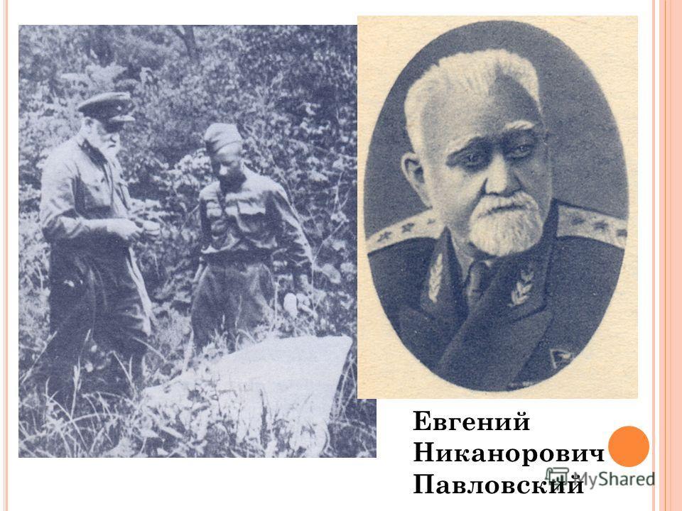 Евгений Никанорович Павловский