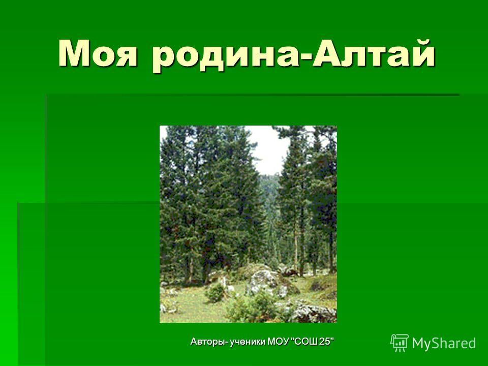 Авторы- ученики МОУ СОШ 25 Моя родина-Алтай