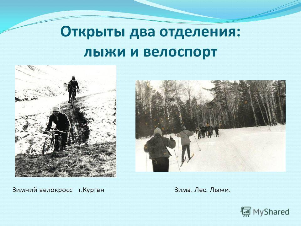 Открыты два отделения: лыжи и велоспорт Зимний велокросс г.КурганЗима. Лес. Лыжи.