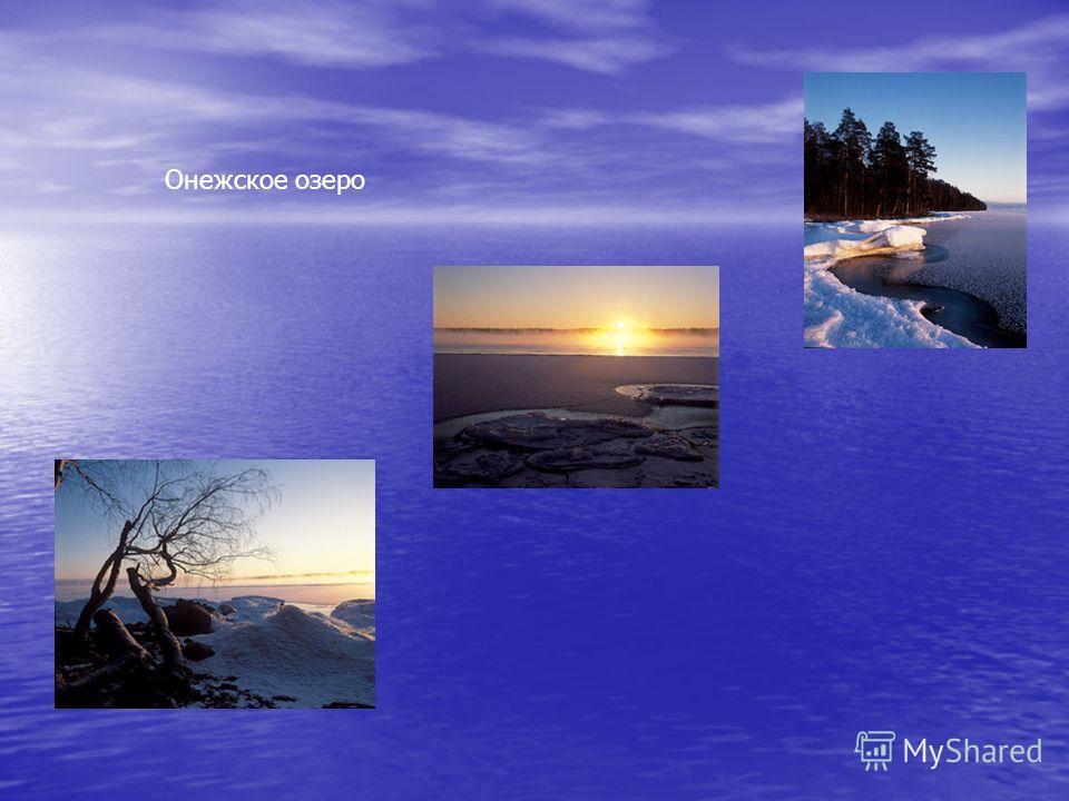 Ледниково-тектоническое (тектонические впадины углублены под тяжестью древнего ледника) Ладожское озеро