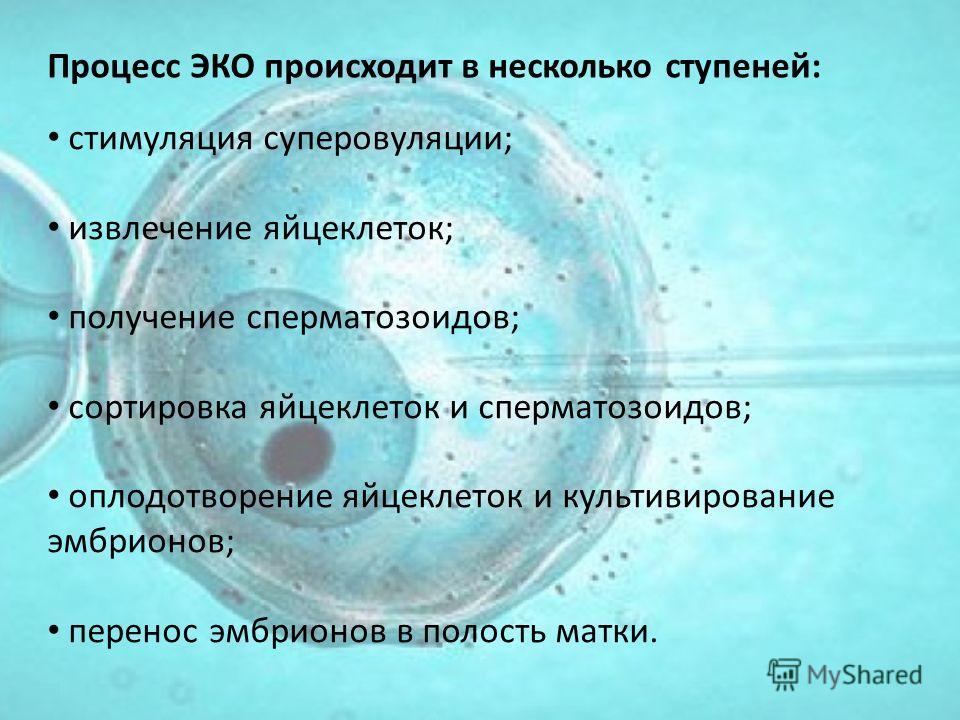 Процесс ЭКО происходит в несколько ступеней: стимуляция суперовуляции; извлечение яйцеклеток; получение сперматозоидов; сортировка яйцеклеток и сперматозоидов; оплодотворение яйцеклеток и культивирование эмбрионов; перенос эмбрионов в полость матки.
