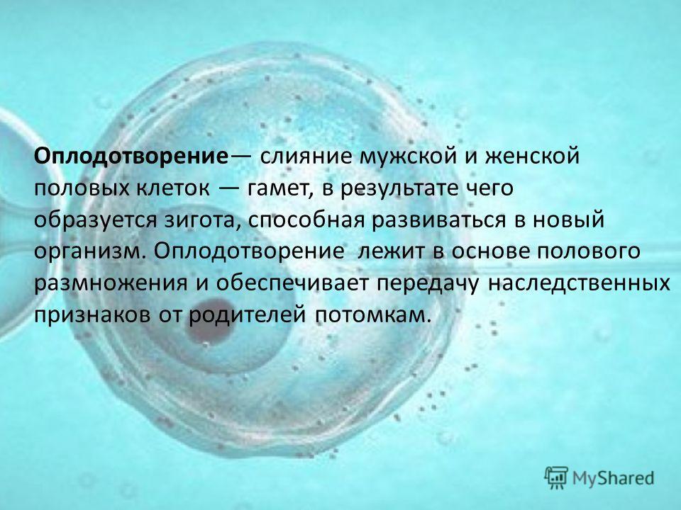 Оплодотворение слияние мужской и женской половых клеток гамет, в результате чего образуется зигота, способная развиваться в новый организм. Оплодотворение лежит в основе полового размножения и обеспечивает передачу наследственных признаков от родител