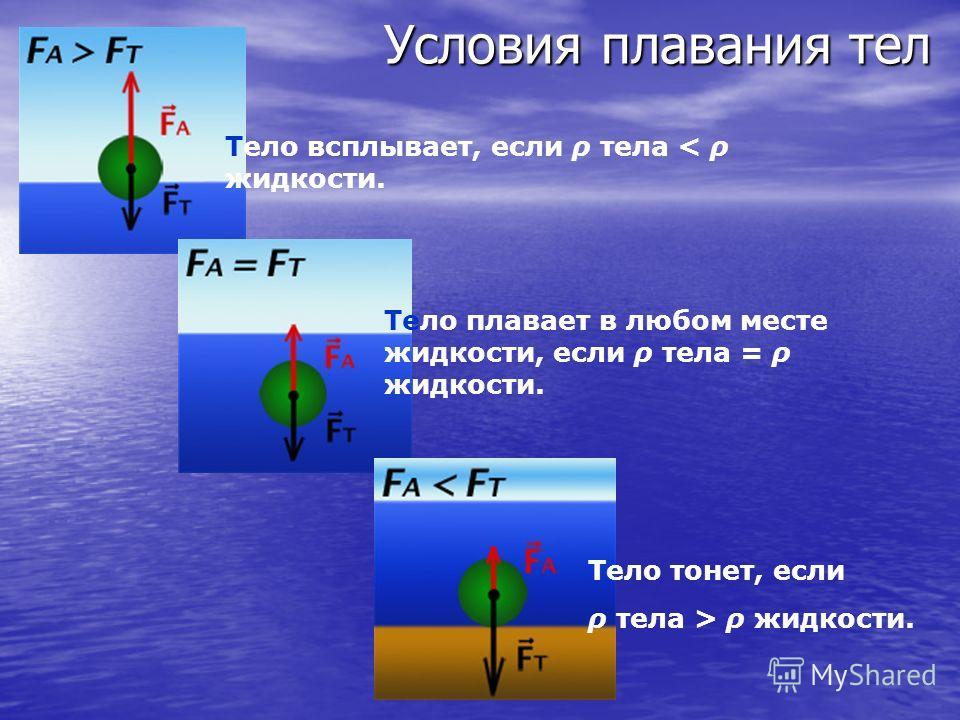 Условия плавания тел Тело всплывает Тело плавает в любом месте жидкости Тело тонет
