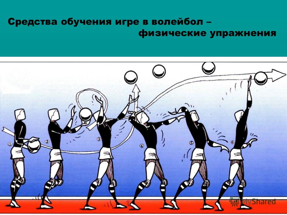 biomechanical principles applied to a volleyball serve A biomechanical analysis of the attack strike in the volleyball game j biomech 199831(suppl 1): 180 google scholar, crossref: 27 rokito, as, jobe, fw, pink, mm, perry, j, brault, j electromyographic analysis of shoulder function during the volleyball serve and spike j shoulder elbow surg 19987(3): 256-263 google scholar.