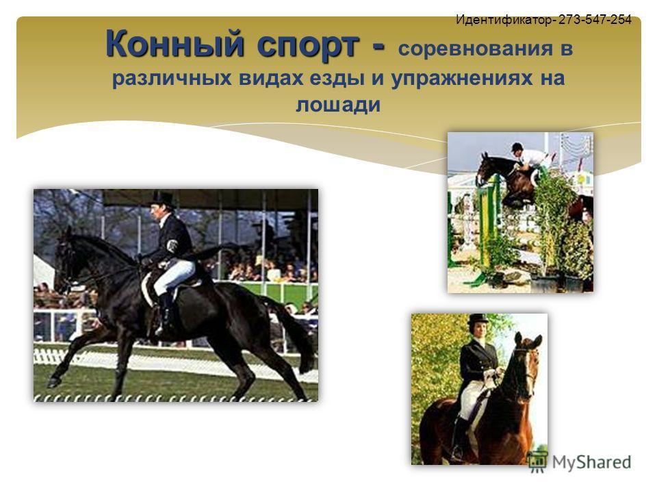 Конный спорт - Конный спорт - соревнования в различных видах езды и упражнениях на лошади Идентификатор- 273-547-254