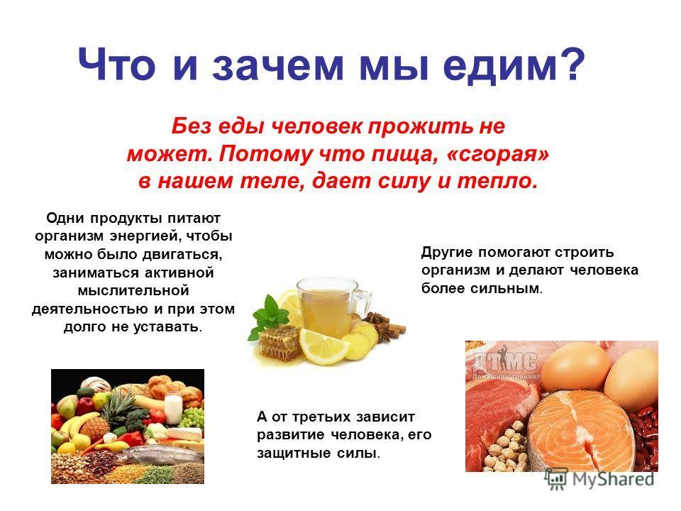 Что и зачем мы едим? Без еды человек прожить не может. Потому что пища, «сгорая» в нашем теле, дает силу и тепло. Одни продукты питают организм энергией, чтобы можно было двигаться, заниматься активной мыслительной деятельностью и при этом долго не у