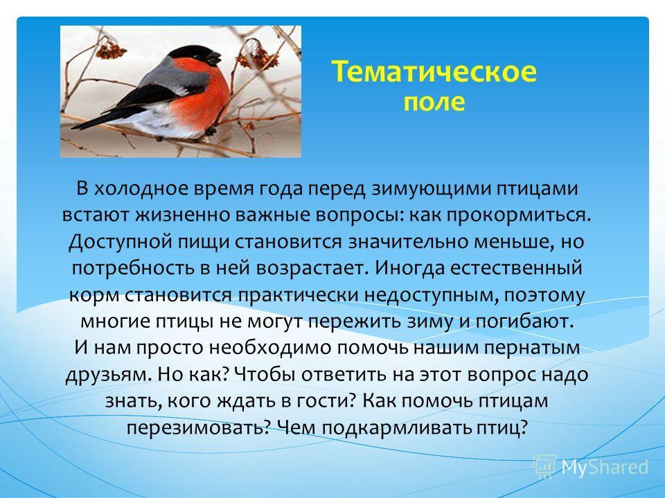 В холодное время года перед зимующими птицами встают жизненно важные вопросы: как прокормиться. Доступной пищи становится значительно меньше, но потребность в ней возрастает. Иногда естественный корм становится практически недоступным, поэтому многие