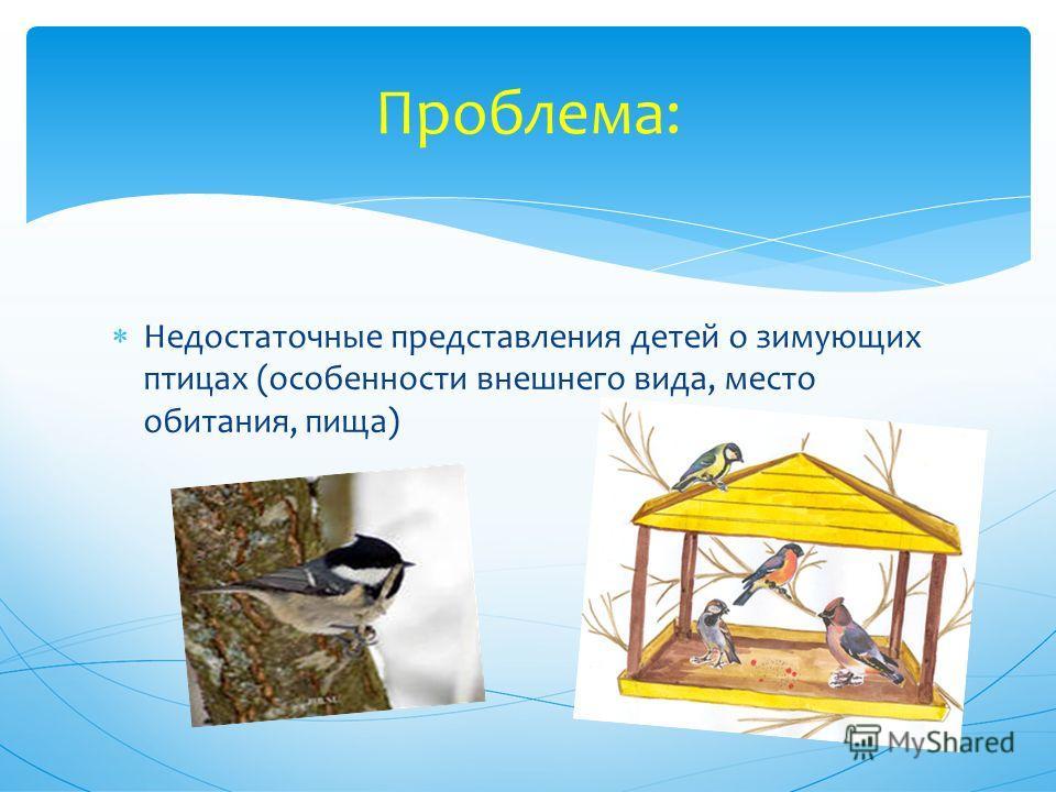 Недостаточные представления детей о зимующих птицах (особенности внешнего вида, место обитания, пища) Проблема: