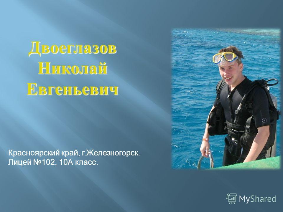 Двоеглазов Николай Евгеньевич Красноярский край, г.Железногорск. Лицей 102, 10А класс.