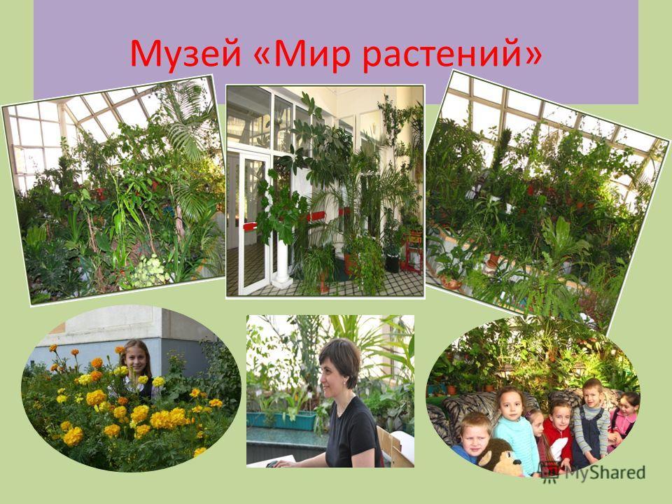 Музей «Мир растений»
