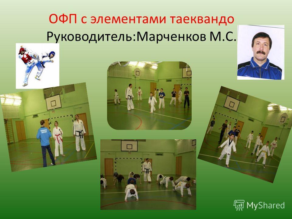 ОФП с элементами таеквандо Руководитель:Марченков М.С.