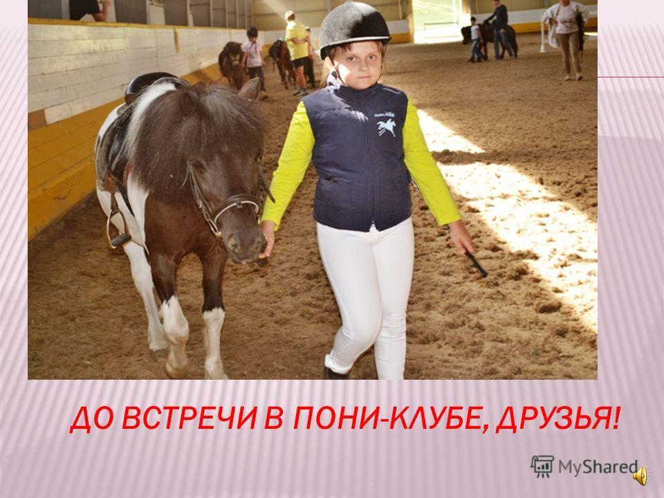 Разве, разве я не лошадь? Разве мне нельзя на площадь? Разве я вожу детей Хуже взрослых лошадей? Я летать могу как птица! Я с врагом могу сразиться На болоте, на снегу Я могу, могу, могу!