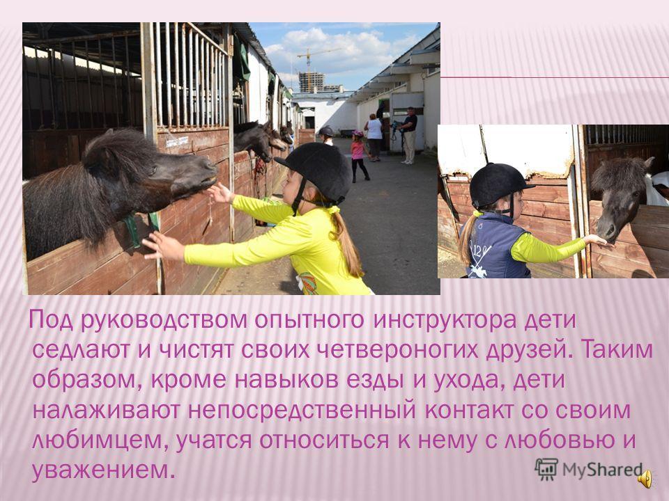 Обучение пони-спорту требует от ребенка немало сил и терпения. Сегодня в пони- клубах Москвы проводятся как групповые, так и индивидуальные занятия, на которых дети учатся не только верховой езде, но уходу за лошадьми.