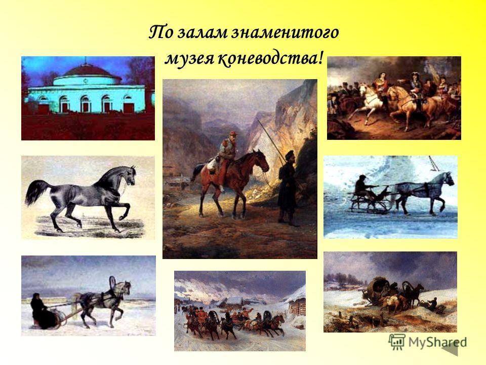 По залам знаменитого музея коневодства!