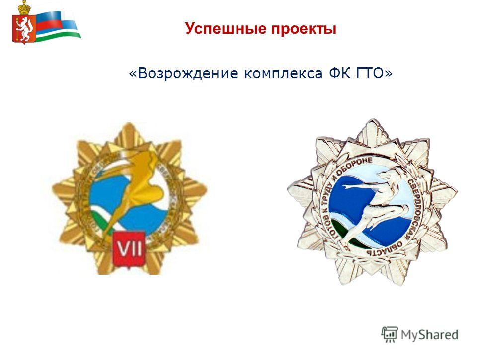 Успешные проекты «Возрождение комплекса ФК ГТО»