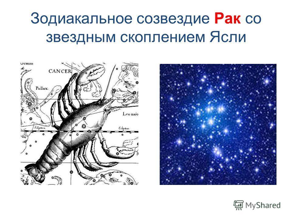Зодиакальное созвездие Рак со звездным скоплением Ясли